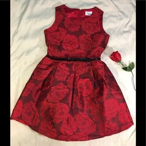 🆕Children's Place Red Rose Embossed Dress Size 14